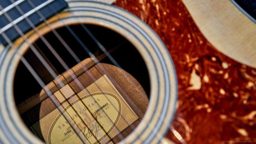 Taylor Acoustic Guitar